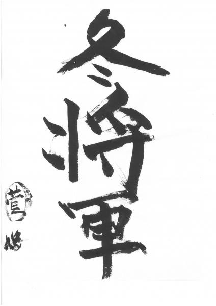 菅「冬将軍」.jpg